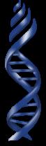 Shoolini University of Biotechnology and Management Sciences