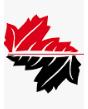 Kolegji Universitar Instituti Kanadez i Teknologjisë